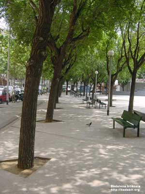 Plaça Badalona. Raval.