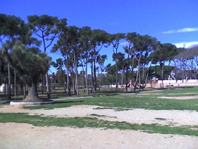 Camps de gespa de la part de dalt de Can Solei